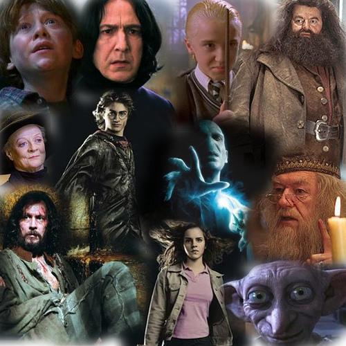 harry potter racial inequality popular culture